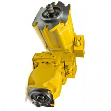 Caterpillar 333-2921 Hydraulic Final Drive Motor