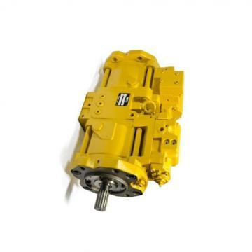 Caterpillar 507-9338 Hydraulic Final Drive Motor