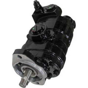 Gleaner A65 Reman Hydraulic Final Drive Motor